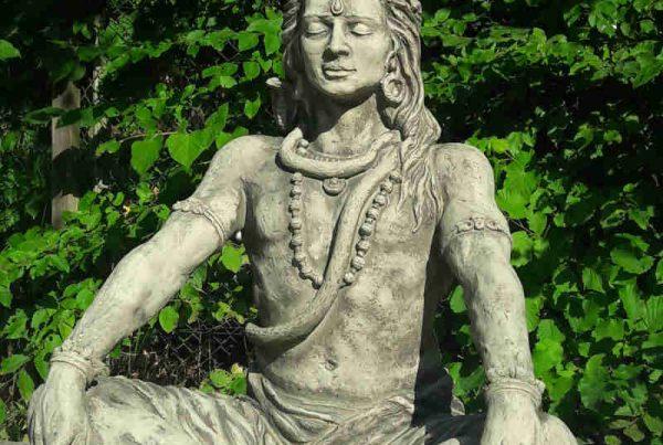 Yoga Shiva